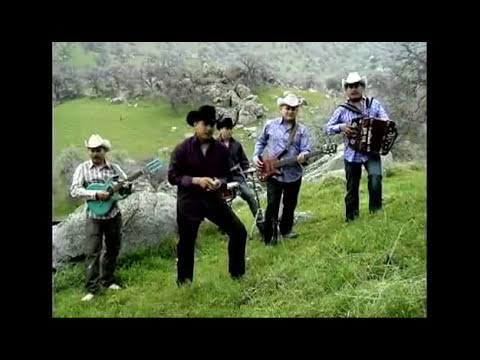 La Ley de Michoacan-Asi son los michoacanos.flv