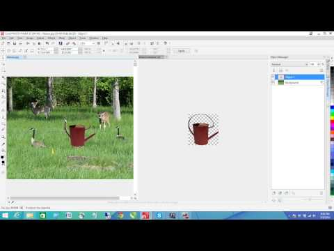 Corel PHOTO-PAINT X7 - How to Clone an object to an image