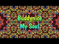 Buddynice - My Soul (Main Mix)