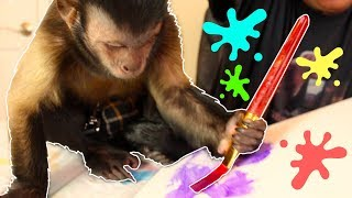 Capuchin Monkey Canvas Paintings! (MASTERPIECES)