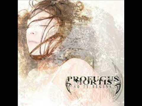 Imagem da capa da música The fallen de Profugus Mortis