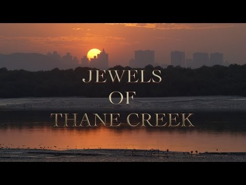 Jewels of Thane Creek