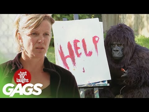 Best Artstic Pranks - Best of Just For Laughs Gags