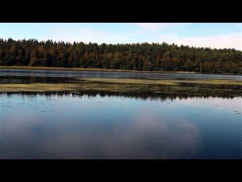 рыбалка у озера нахимовского ленинградской области