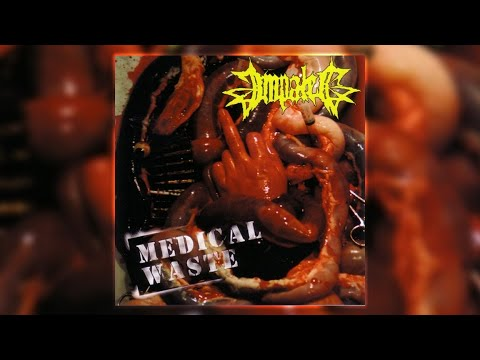 Impaled - Gross Anatomy