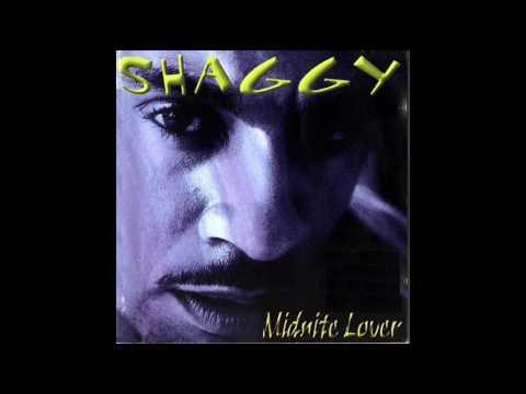 Shaggy - My Dream
