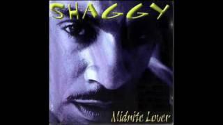 Watch Shaggy My Dream video
