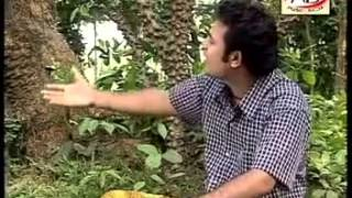 bangla song sakhor by Sanowar