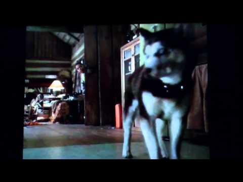 Snow dogs  Deamon scene