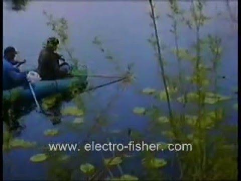 pesca electrica Chile samus725MP.