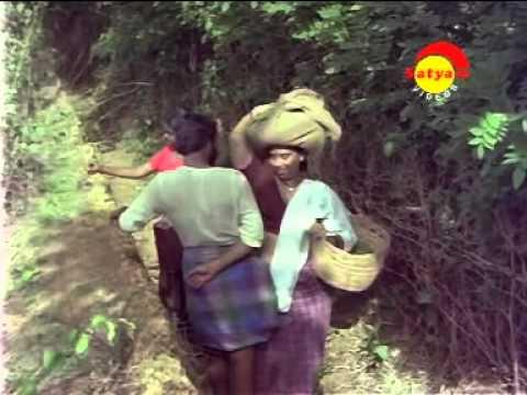 Parankimala Hot Mallu Aunty video