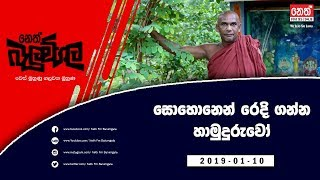 Neth Fm Balumgala (2019-01-10)