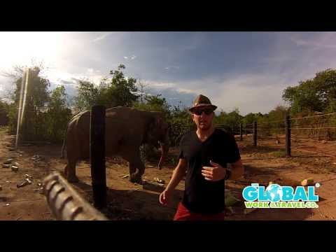 Wildlife Rescue Centre Thailand (VO-31) with Thorsten - The Global Work & Travel Co.
