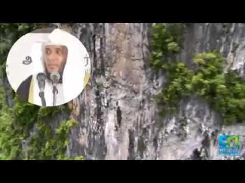 Abdul Basith Moulavi Tamil Bayan முஹ்மீன்கள் உலகம் video