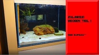 SULAWESI BECKEN / DIE EINRICHTUNG / TEIL 1