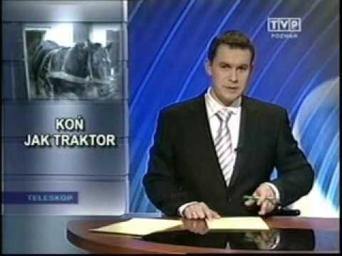 Koń jak traktor - fragment Teleskopu w TVP Poznań