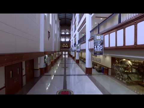 Hallways at Notre Dame