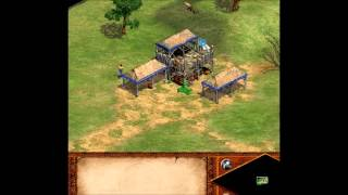Age Of Empires Villager Wood