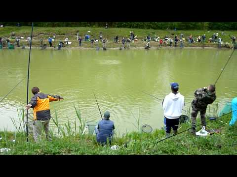 Рыбалка на Фoрель