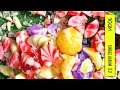 [Rom/Han Lyrics] 10cm - 봄이 좋냐?? (What The Spring??) (Full Audio) [Digital Single '3.2']