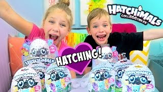 HATCHING Baby Animals! Hatchimals Colleggtibles: Surprise Eggs Inside Blind Bags!