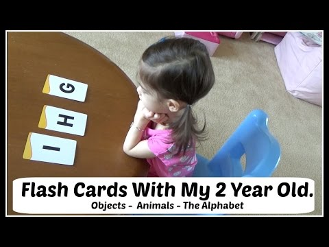 Flash Cards With My 2 Year Old