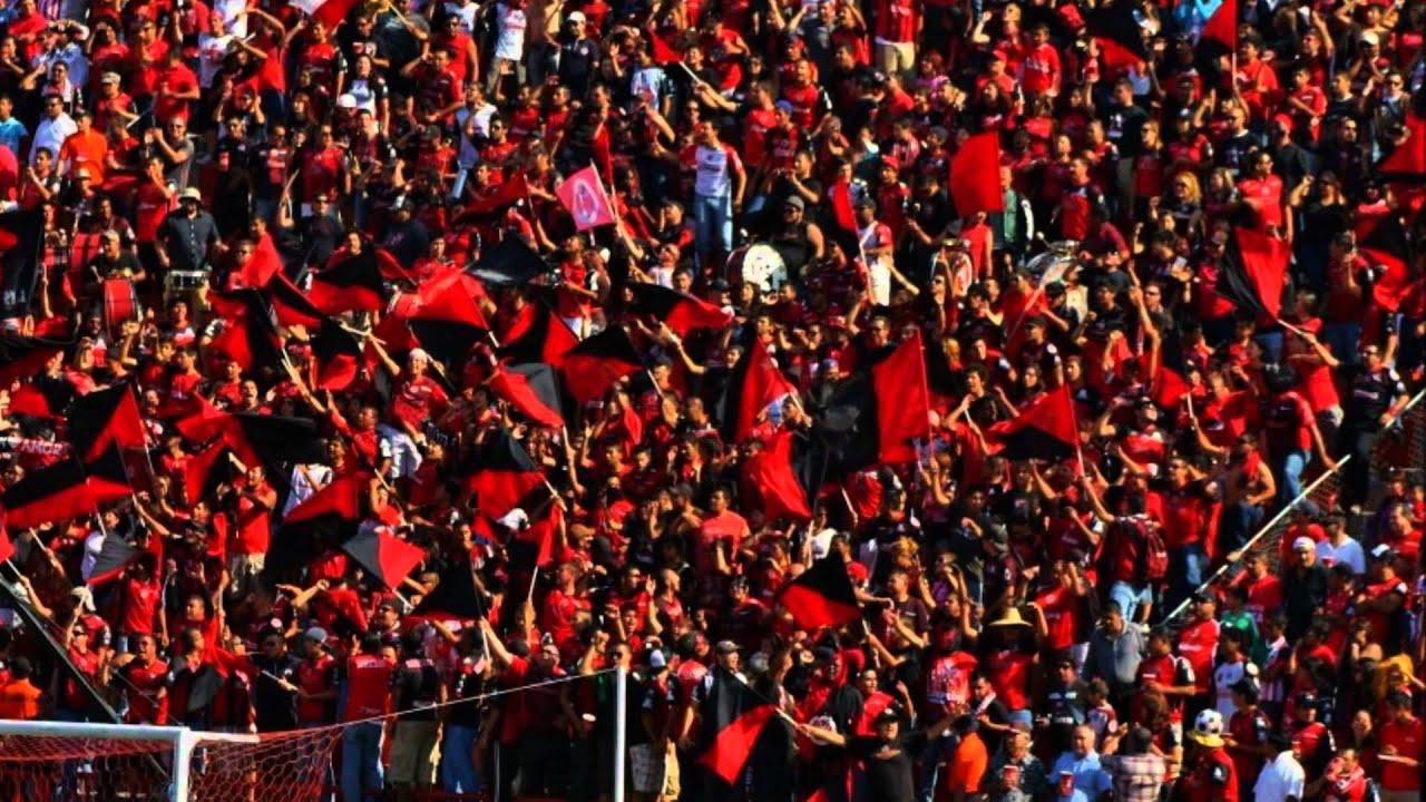 Ver Partido: Club Tijuana vs Querétaro (17 de octubre) (A Que Hora Juegan)