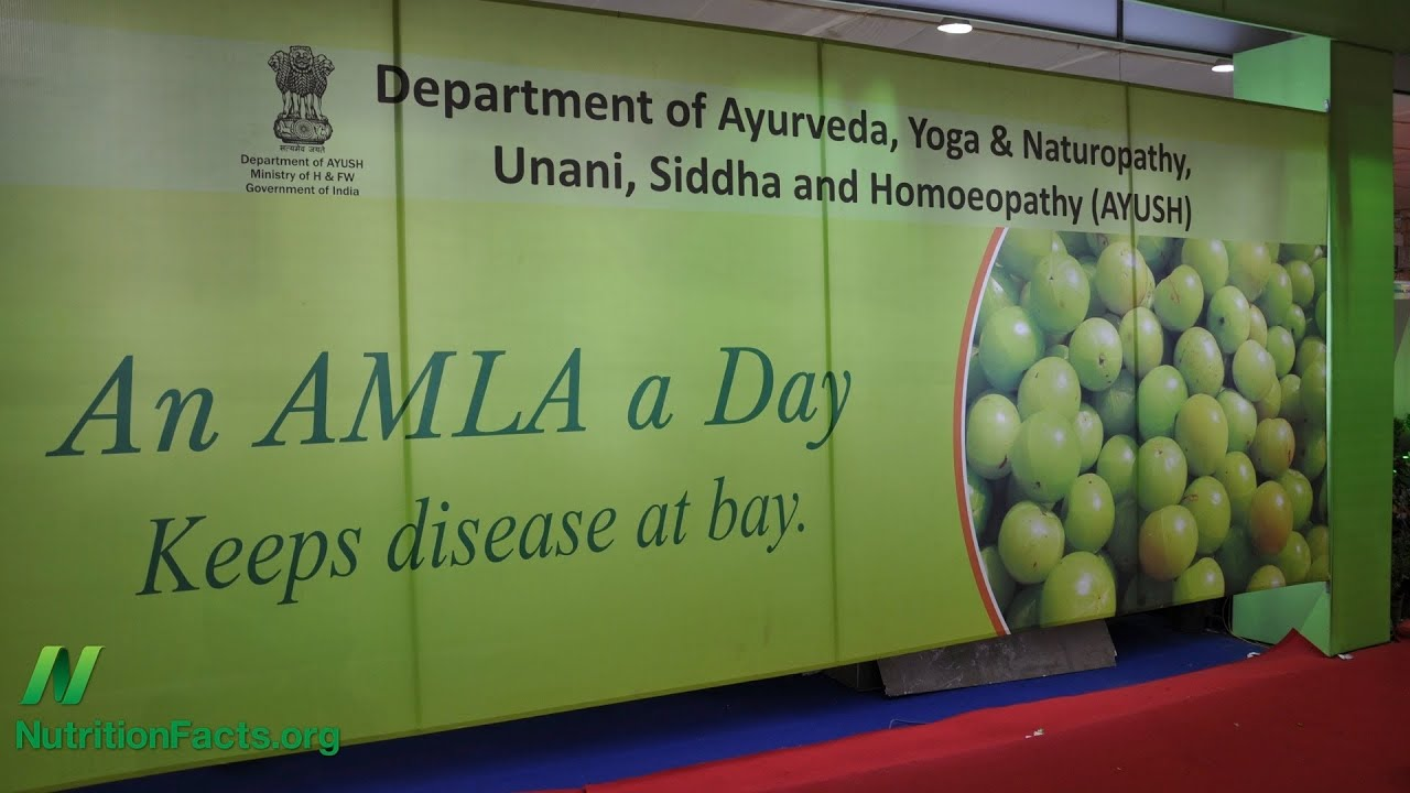 Amla Versus Cancer Cell Invasion