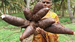Maravalli Dosa | Tapioca Dosa Recipe | Kerala Kappa Dosa | Food Money Food
