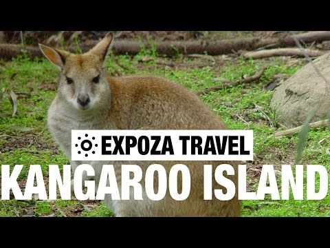 Kangaroo Island (Australia) Vacation Travel Wild Video Guide