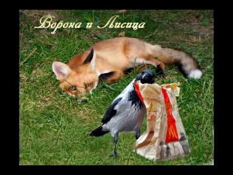 Ворона и лисица(басня Крылова в переложении).avi