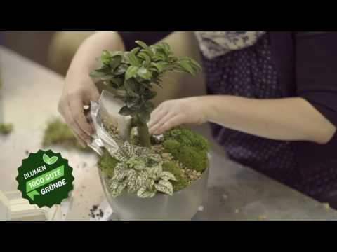 DIY Miniatur-Garten selber machen!