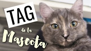FURRY FRIEND TAG: ¡Os presento a Mimi! | Sandsleek