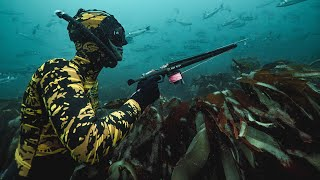 SPEARFISHING BASICS IN UNDER 2 MINUTES