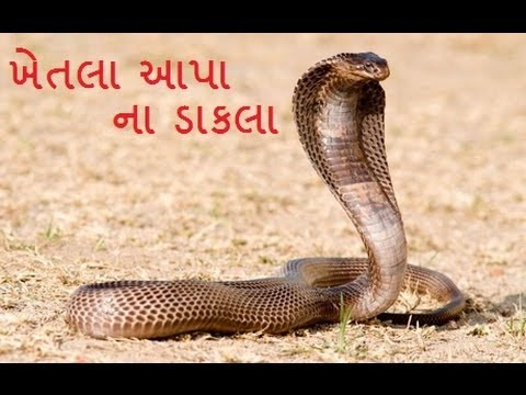 Khetla Aapa Na Dakla 2 Dj Mix Naresh Raval Gujarati Mataji No Mandvo video