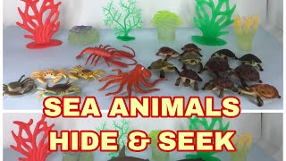 Sea Animals Hide and Seek - SHARK Story for Children Toddler