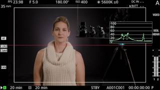 01. Canon EOS C700 Before The Prep: Exposure Assist Tools