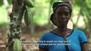Cocoa Life: Farming - Planting the future in Côte D