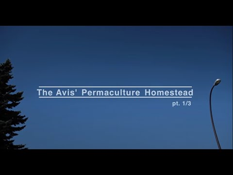 The Avis' Permaculture Homestead  //  pt. 1