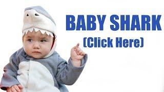download lagu Baby Shark Dance Trend gratis