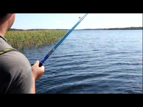 ютуб рыбалка на щуку на живца