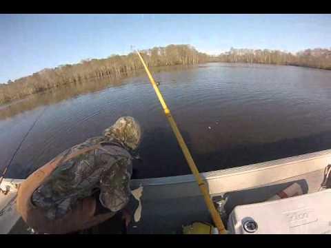 Northwest River Park Fishing Northwest River Perch Fishing