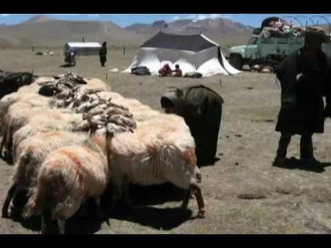 Voyage au pays des nomades tibétains