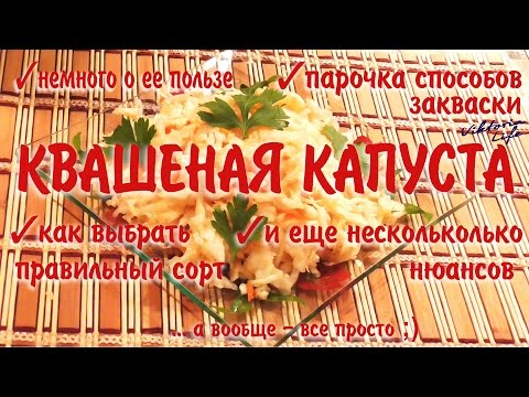 Квашеная капуста: пара способов закваски, как выбрать нужный сорт, немного о пользе и другие нюансы