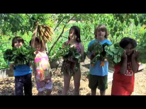 Growing in the Garden - The Orchard School