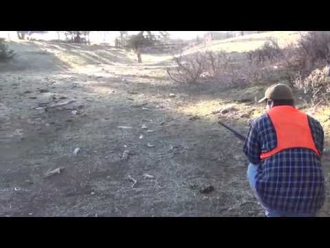 Rabbit Hunting- 12 gauge to 22 LR Pathfinder Series