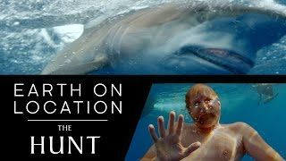 Filming Predators In The Big Blue - The Hunt - #EarthOnLocation Vlog - BBC Earth Unplugged