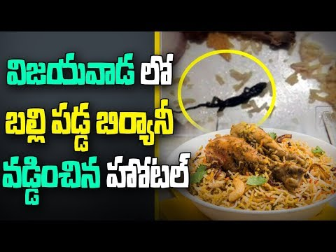 Lizard Found in Chicken Biryani | Two Hospitalized | Vijayawada