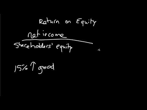 Return on Equity (ROE) Explained in Brief | Investing for Beginners (13/14)