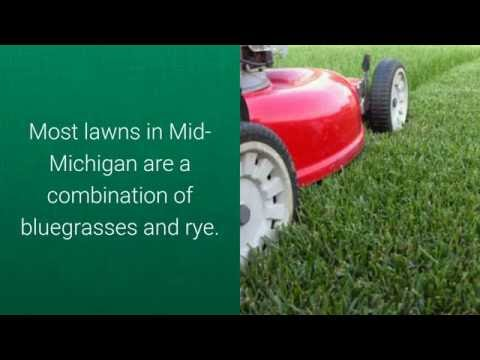 Top 5 Mid Michigan Lawn Care Questions by Reder Landscaping